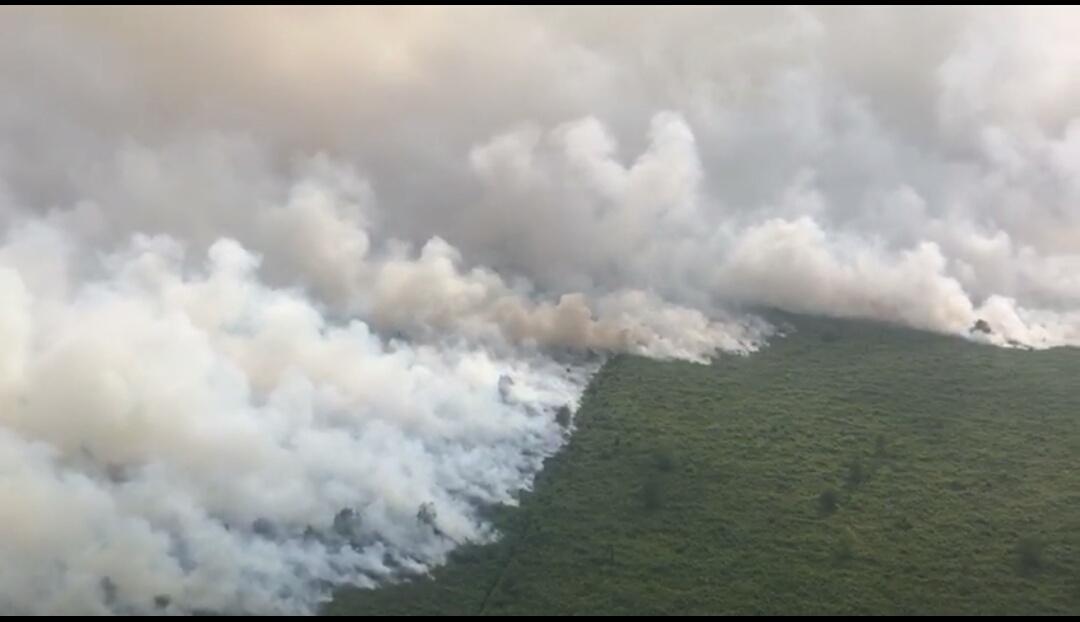 https: img-o.okeinfo.net content 2019 08 14 610 2091799 lahan-di-sumsel-kembali-terbakar-ratusan-hektare-hangus-dalam-semalam-L8WLe2QWue.jpg