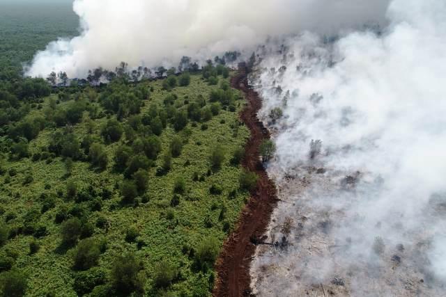 https: img-o.okeinfo.net content 2019 08 20 337 2094485 sudah-dibuat-sekat-pembatas-api-masih-terus-membakar-lahan-di-musi-banyuasin-35H2fO78p2.jpg