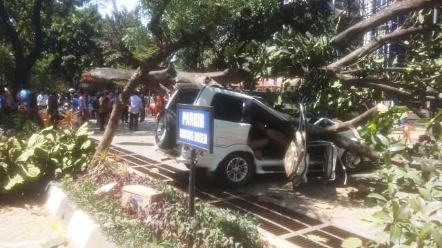 https: img-o.okeinfo.net content 2019 08 21 338 2094853 universitas-pancasila-berduka-terhadap-keluarga-korban-insiden-pohon-tumbang-RhxCmdP5Y7.jpg
