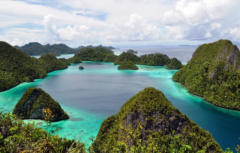 wisatawan yang hendak traveling. Ia pun berharap agar ke depannya kondisi Papua cepat pulih dan kembali kondusif.