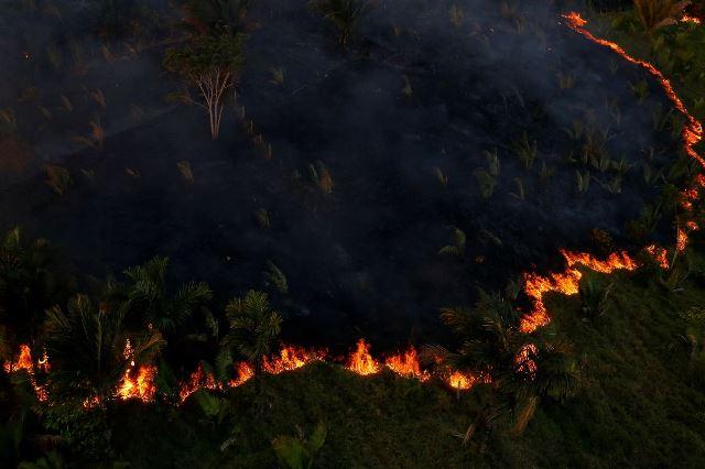 https: img-o.okeinfo.net content 2019 09 07 18 2101823 7-negara-sepakat-melindungi-hutan-amazon-2YwjyXYuge.jpeg
