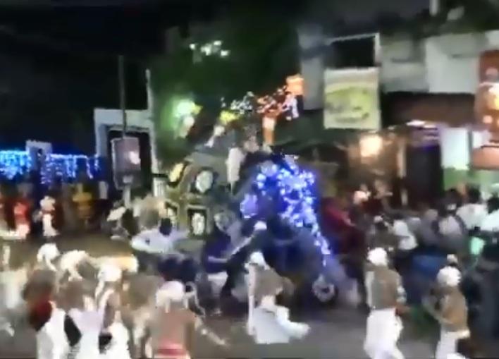https: img-o.okeinfo.net content 2019 09 09 18 2102510 gajah-mengamuk-di-festival-keagamaan-sri-lanka-lukai-17-orang-FD0YpVi5Cw.jpg