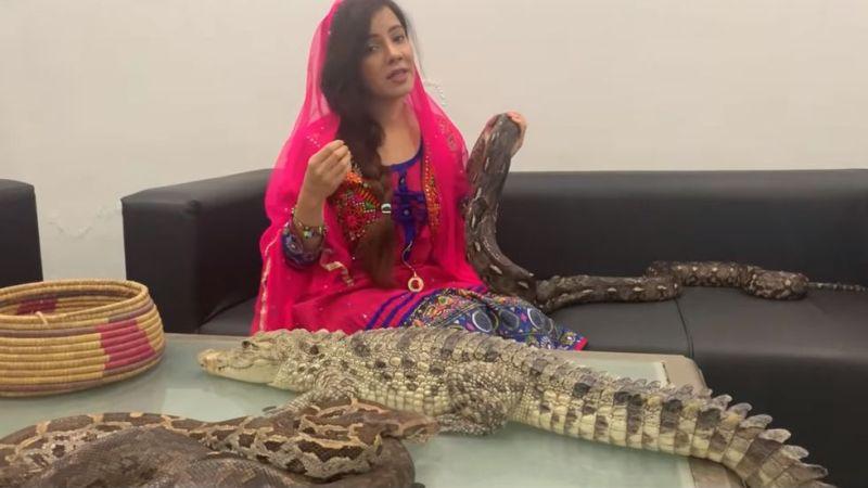 https: img-o.okeinfo.net content 2019 09 15 18 2105125 penyanyi-pakistan-hadapi-hukuman-penjara-setelah-ancam-pm-india-dengan-ular-dqaQUAF21H.jpg