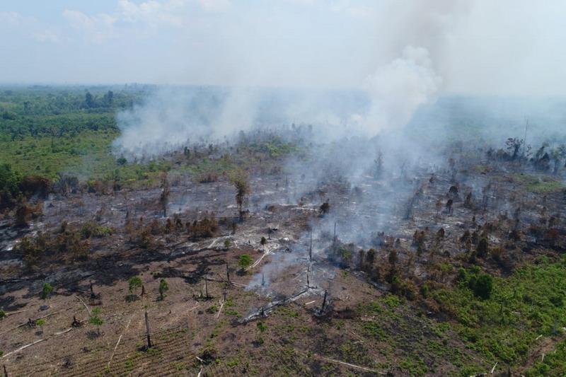 https: img-o.okeinfo.net content 2019 09 17 337 2105710 wacana-copot-kapolda-dinilai-penting-untuk-penegakkan-hukum-soal-kebakaran-hutan-NqbKR1jwiV.jpg