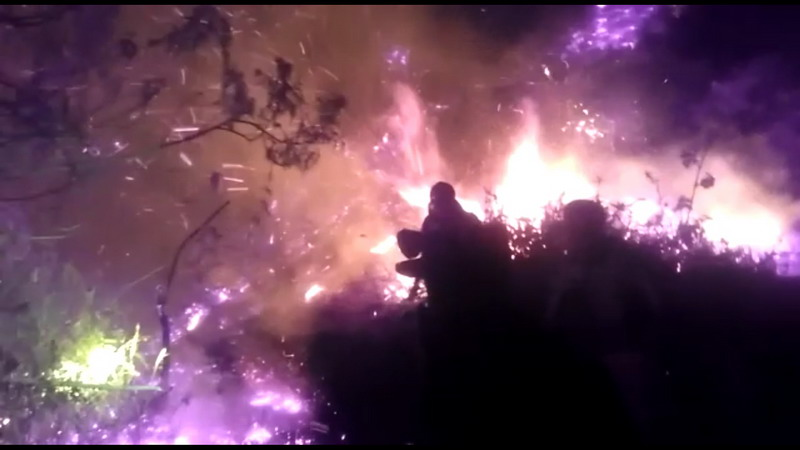 https: img-o.okeinfo.net content 2019 09 18 512 2106153 gunung-slamet-terbakar-puluhan-petugas-berjibaku-melawan-api-myNr29brD0.jpg
