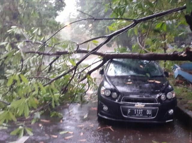https: img-o.okeinfo.net content 2019 09 19 338 2106601 bogor-hujan-angin-18-rumah-rusak-parah-pohon-tumbang-DqtFx95ZIw.jpg