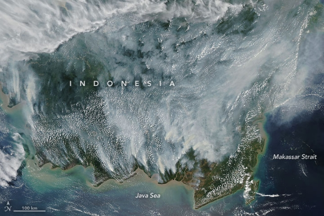 https: img-o.okeinfo.net content 2019 09 20 18 2107470 dampak-kebakaran-hutan-indonesia-capai-filipina-ws7lx64ZVs.jpg