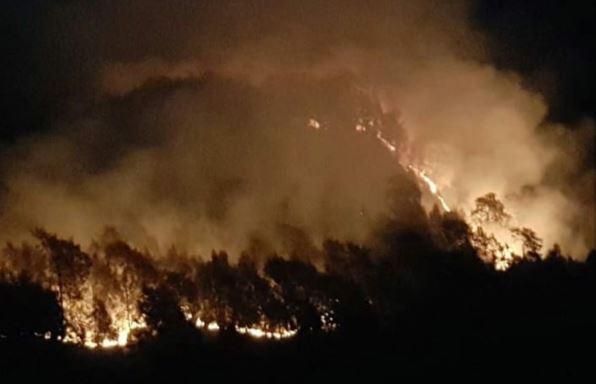 https: img-o.okeinfo.net content 2019 09 20 519 2107113 hutan-gunung-semeru-terbakar-petugas-larang-pendaki-ke-puncak-mahameru-rGStDkmeYe.JPG