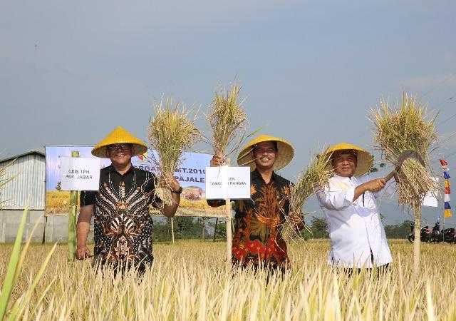 https: img-o.okeinfo.net content 2019 09 21 1 2107580 kementan-dukung-jawa-barat-jadi-penghasil-beras-organik-terbesar-di-indonesia-mZZUKLBGfU.jpg
