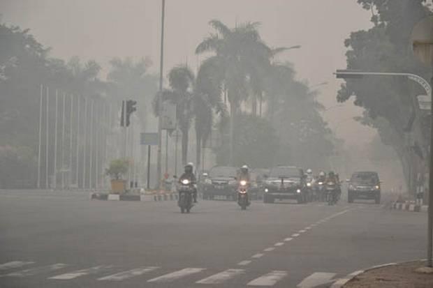 https: img-o.okeinfo.net content 2019 09 22 337 2107916 menteri-pertanian-batal-ke-pekanbaru-karena-kabut-asap-karhutla-bwkznM0cuU.jpg