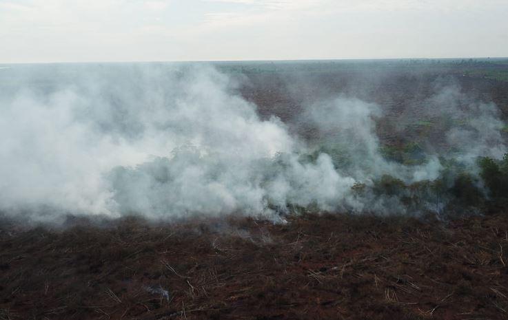 https: img-o.okeinfo.net content 2019 09 23 337 2108013 dpr-pembakar-hutan-selevel-dengan-teroris-TiYRIjWK0B.JPG