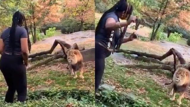 https: img-o.okeinfo.net content 2019 10 04 18 2112954 wanita-ini-diburu-polisi-karena-joget-di-kandang-singa-ap48jPlIkT.jpg