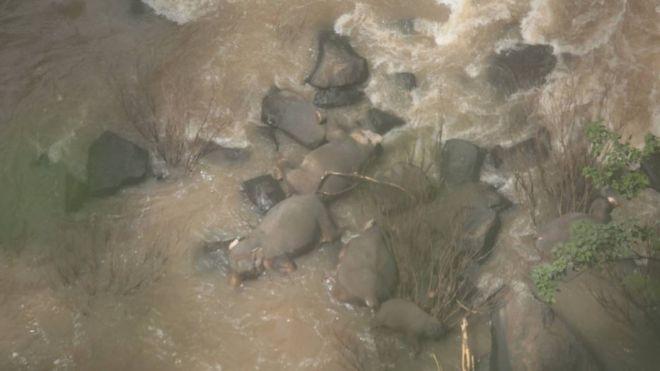 https: img-o.okeinfo.net content 2019 10 06 18 2113466 6-gajah-mati-saat-mencoba-menyelamatkan-satu-sama-lain-di-air-terjun-neraka-FP5GUQ0wtz.jpg