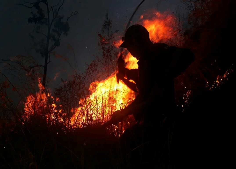 https: img-o.okeinfo.net content 2019 10 08 519 2114277 hutan-konservasi-gunung-arjuno-kembali-terbakar-nQ4hRH0TyY.jpg