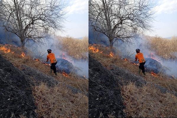 https: img-o.okeinfo.net content 2019 10 12 337 2116044 hutan-gunung-gandul-terbakar-UzuQnku7K0.jpeg