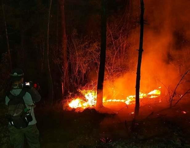 https: img-o.okeinfo.net content 2019 10 23 525 2120881 kawasan-taman-nasional-gunung-ciremai-kembali-terbakar-TW1rjbkKLI.jpg