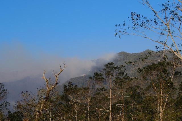 https: img-o.okeinfo.net content 2019 10 23 609 2120752 hutan-gunung-lompobattang-dan-bawakaraeng-sulsel-terbakar-APWEsHGvM9.jpg