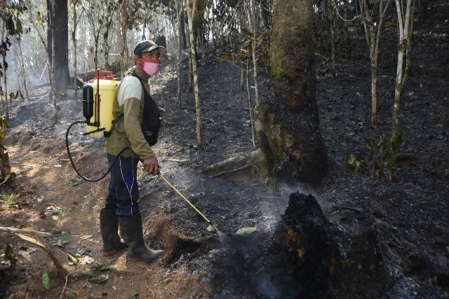 https: img-o.okeinfo.net content 2019 10 23 609 2120915 hutan-yang-terbakar-di-gunung-bawakaraeng-10-hektare-Up6ZyT2qqu.jpg