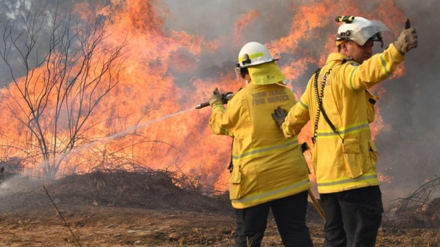 https: img-o.okeinfo.net content 2019 11 09 18 2127802 kebakaran-hutan-di-australiacatat-rekor-terburuk-IfclTdpfAv.jpg