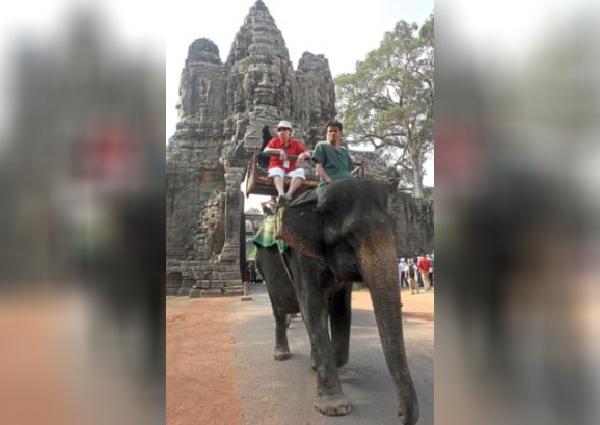 https: img-o.okeinfo.net content 2019 11 16 18 2130716 kamboja-akan-larang-atraksi-tunggang-gajah-di-angkor-wat-mulai-2020-tfSIRcH8nn.jpg