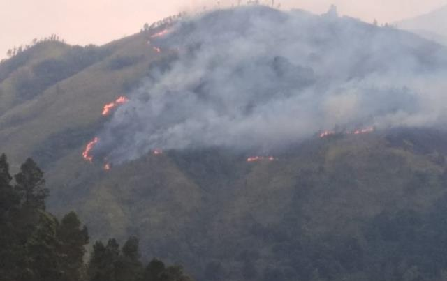 https: img-o.okeinfo.net content 2019 11 16 519 2130724 jalur-pendakian-gunung-lawu-magetan-ditutup-sementara-dampak-kebakaran-2uULPC842i.jpg