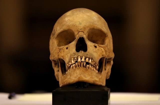 https: img-o.okeinfo.net content 2019 11 23 18 2133598 9-terngkorak-suku-sri-lanka-berusia-200-tahun-kembali-ke-tanah-leluhur-ij1FAGtNH0.jpg