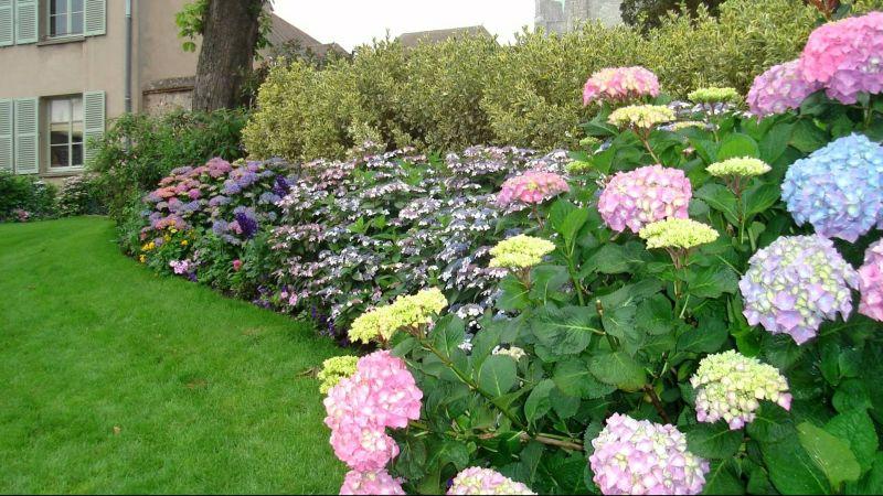 https: img-o.okeinfo.net content 2019 11 27 320 2135133 bunga-termahal-di-dunia-ada-yang-beracun-hingga-seharga-rp222-miliar-3zVE0GLX7C.jpg