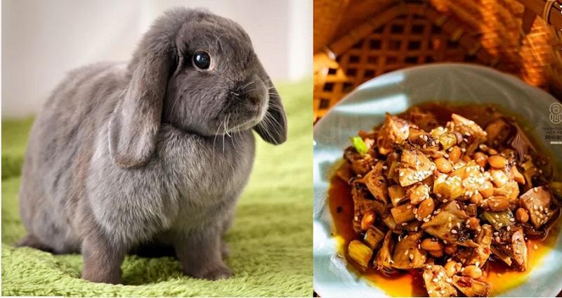 https: img-o.okeinfo.net content 2019 12 11 298 2140475 jual-makanan-dari-daging-kelinci-restoran-ini-dikecam-5-000-aktivis-pencinta-hewan-NU8DBv78nw.jpg