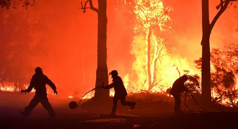 https: img-o.okeinfo.net content 2020 01 03 18 2148790 hampir-setengah-miliar-hewan-diperkirakan-mati-akibat-kebakaran-hutan-australia-YDl86LiK4D.jpg