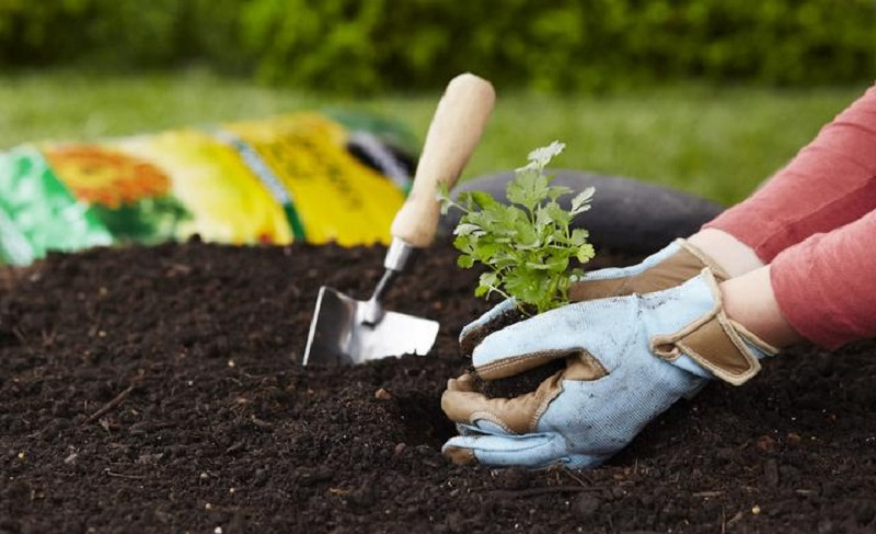 https: img-o.okeinfo.net content 2020 01 03 196 2148976 menanam-pohon-hingga-daur-ulang-sampah-plastik-untuk-cegah-banjir-A7NNZ5ktME.jpg