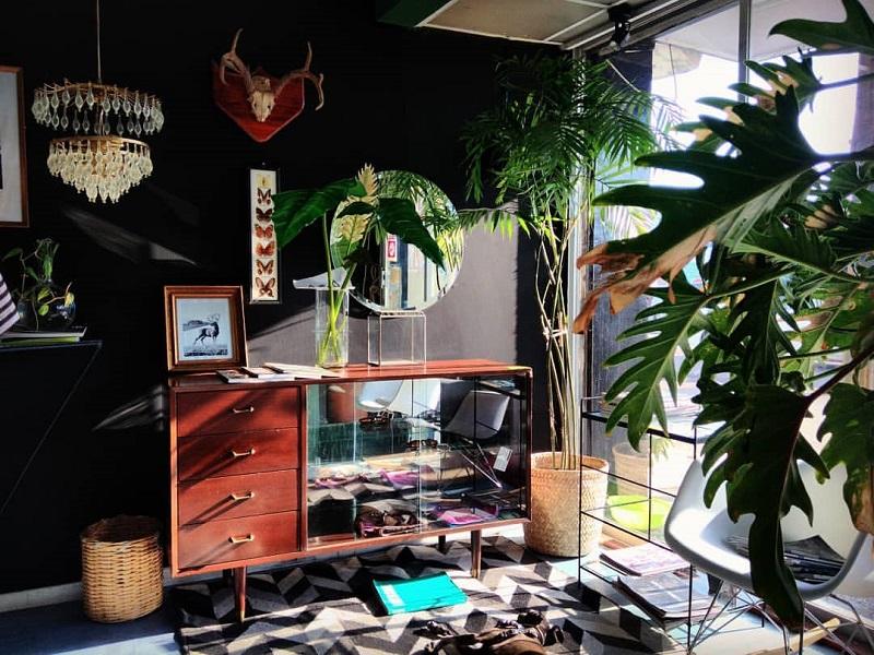 https: img-o.okeinfo.net content 2020 01 24 196 2157986 ide-dekorasi-taman-indoor-minimalis-modern-bikin-rumah-jadi-nyaman-6sbOLBUgw0.jpg