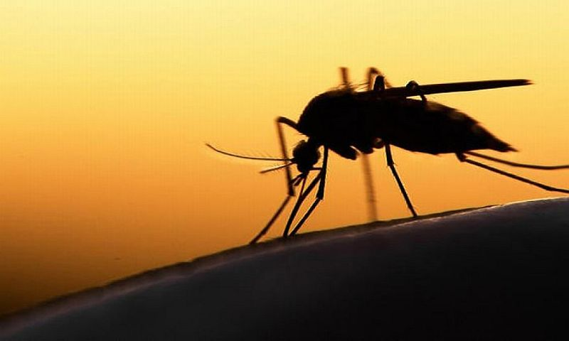 WHO pun tengah mewanti-wanti lantaran virus ini diperkirakan bisa menular lewat airbourne.
