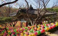 OKEZONE WEEK-END: Kuil Gilsangsa, Kuil Cantik Menawan Bekas Rumah Geisha di Jantung Kota Seoul