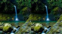 SHARE LOC: Lepas Penat ke Curug Goa Lumut Indah Bogor, Berendam di Kolam Bawah Air Terjun Sambil Nikmati Pemandangan Asri