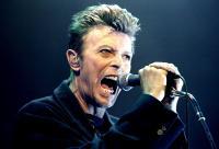 Kenang David Bowie, Rekan Bandnya Siap Gelar Konser Tribute di 26 Kota
