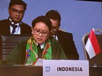 Berpidato di  KTT D8, Menlu Retno Tekankan Perlunya Peran Negara Anggota dalam Mewujudkan Kesejahteraan Rakyat