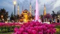 Menguak Asal Usul Tulip, Bunga Istimewa yang Menyerupai Lafadz Allah