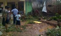 Magetan Dilanda Puting Beliung, Puluhan Rumah Rusak dan Pohon Bertumbangan