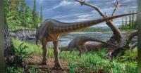 Peneliti Temukan Fosil Dinosaurus di Sungai Purba Australia