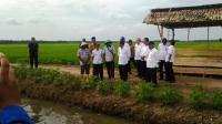 Curhat Petani ke Jokowi, Harga Jual Padi Rendah hingga Infrastruktur Kurang Memadai