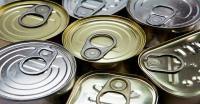 Heboh Kasus Makanan Kedaluarsa, 2 Anak Zaskia Adya Mecca Pernah Keracunan