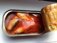 3 Fakta Penting tentang Cacing dalam Sarden yang Perlu Anda Tahu!
