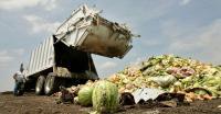 Cara untuk Mengatasi Sampah Sisa Makanan yang Membludak!