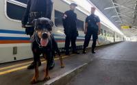 Masih Dipadati Pemudik, Polisi dan Anjing Pelacak <i>Standby</i> di Stasiun Gambir hingga 24 Juni