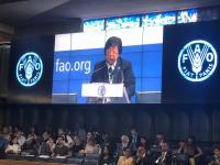 Ke Italia, Menteri LHK Bicara Pengelolaan Hutan Indonesia