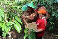 Berwisata ke Blitar Menikmati Hamparan Kebun Kopi hingga Menengok Peninggalan Bung Karno di Hotel Antik