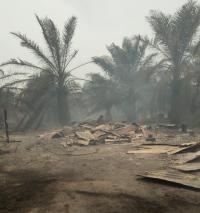Kebakaran Hutan di Riau Menjalar ke Permukiman, 20 Rumah Warga Hangus