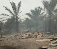 20 Rumah Hangus Akibat Kebakaran Hutan & Lahan di Riau, 50 Warga Mengungsi