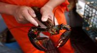 Penemu Alat Tangkap Lobster Meninggal Dunia