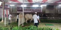 Masjid Istiqlal Salurkan Daging Kurban untuk 5 Ribu Warga